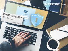 Fakta atau Mitos Seputar Keamanan Cyber untuk Pengguna Internet