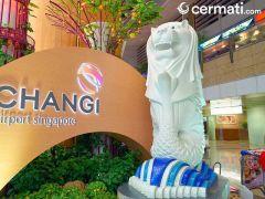 Transit di Bandara Changi? Anda Bisa Menikmati Fasilitas Gratis Ini