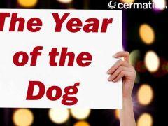 Ini Peluang Bisnis yang Menjanjikan di Tahun Sio Anjing Tanah