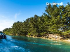 Kenapa Harus Berkunjung Ke Pulau Seribu Walau Hanya Sekali?