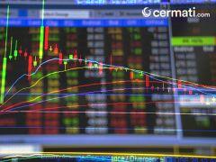 Berminat Beli Saham IPO? Inilah Tips Memilih dan Membelinya