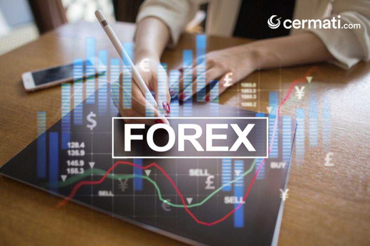 untung rugi investasi forex