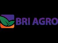 Kredit Pemilikan Rumah Kredit BRI Agro Griya Fixed 1 tahun