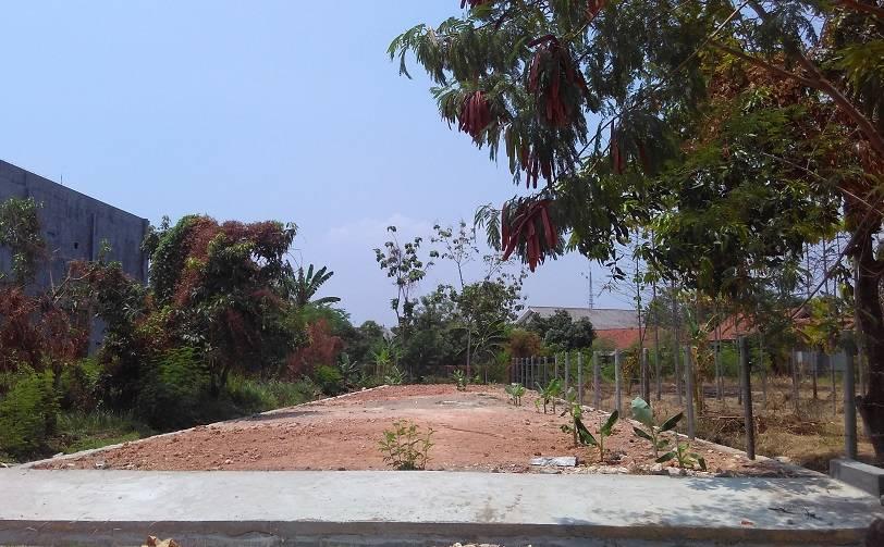 Kondisi Tanah yang Rata