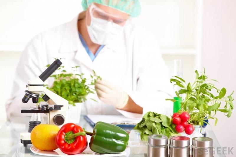 Food Scientist via wisegeek.com