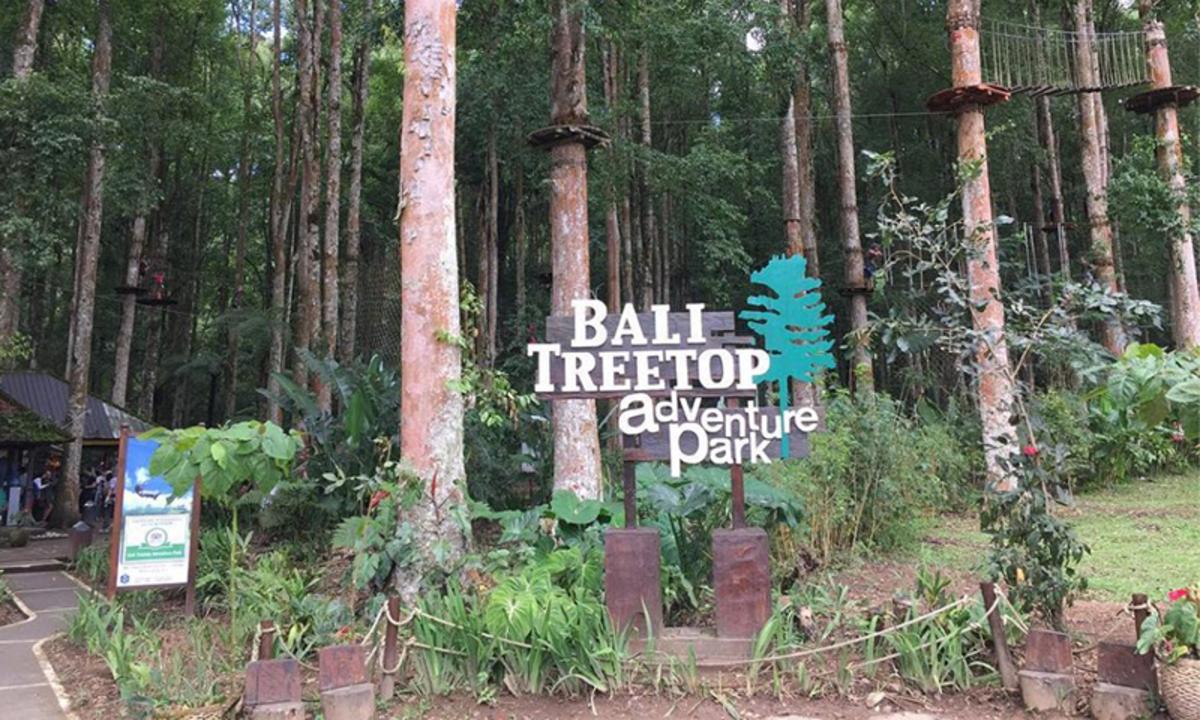 Berlibur ke Bedugul Bali? Ini 7 Destinasi Wisata yang Tidak Boleh