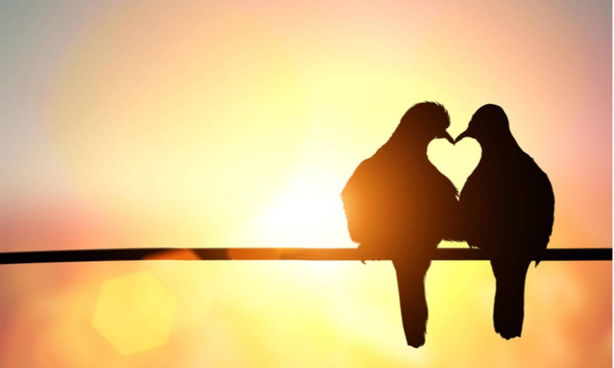 Kata Kata Cinta Romantis Yang Bisa Bikin Hubungan Kamu Awet