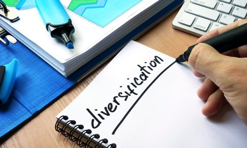 Diversifikasi - Sukses Bisnis: 7 Gebrakan Agar Usaha Kecil Anda Jadi Besar