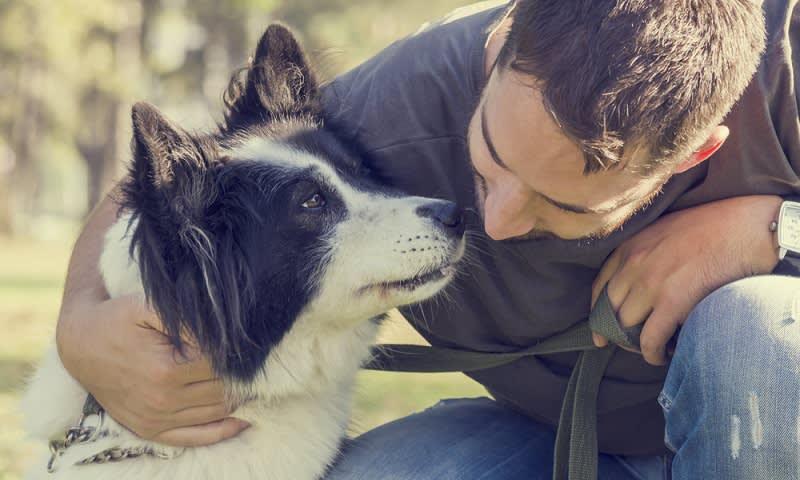 Mengurus Binatang Peliharaan Teman Kamu yang Ditinggal Sendirian