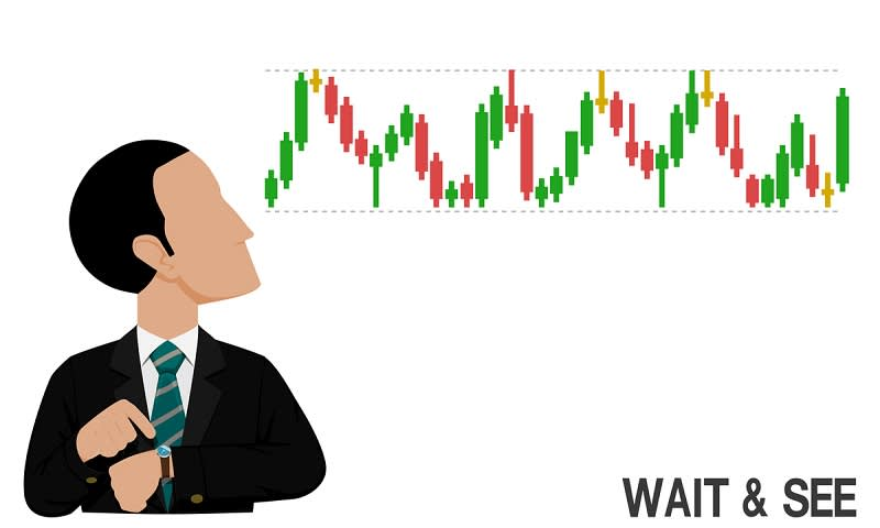 Investor Wait and See