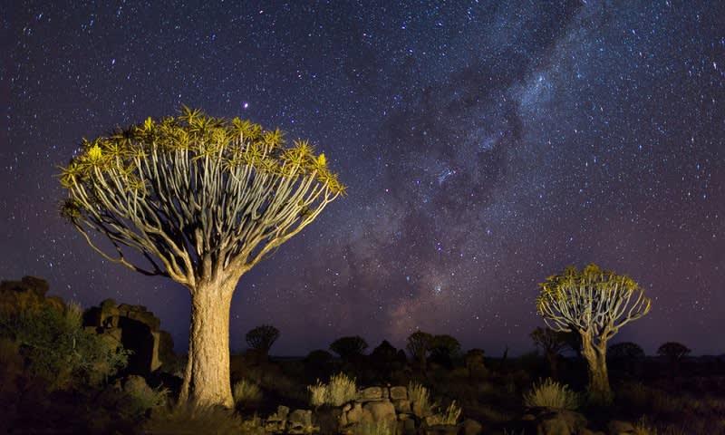 Taman Alam Kalahari, Namibia Selatan