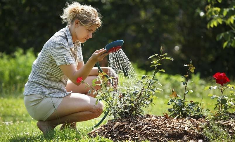 12 Cara Mudah Menghemat Air di Rumah Anda - Cermati.com