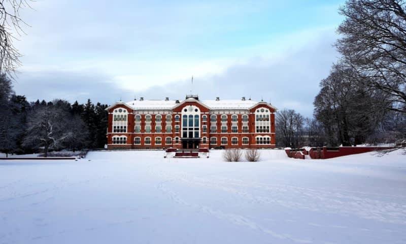 Norwegian University